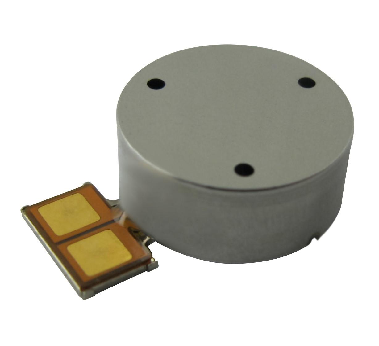 G1040001D Coin Vibration Motor