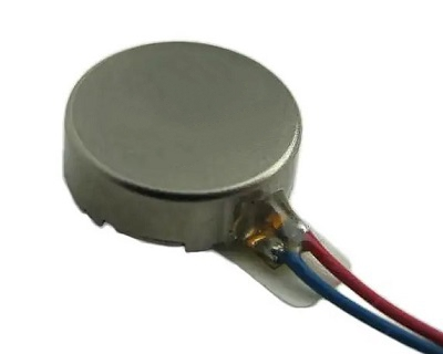 ERM Brush Type Coin Motor